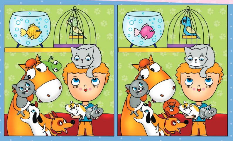 Картинка найди отличия домашние животные